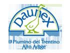 Logo Daunex produttore piumoni per letto